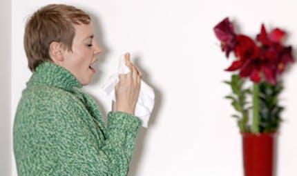 Allergies : faut-il désensibiliser ?