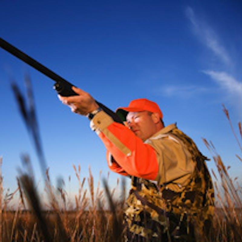 Avoir ou acheter une arme à feu : les règles