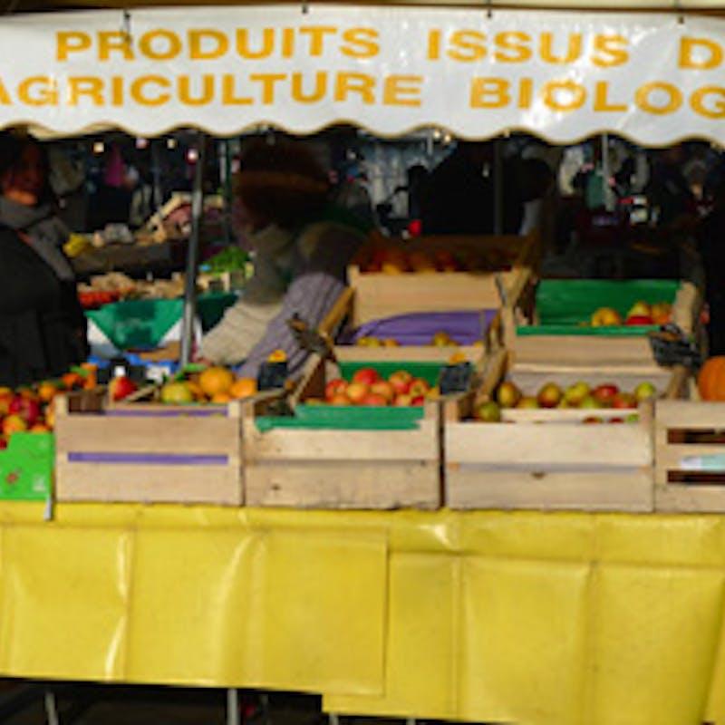 Pesticides, diesel et bisphénol A provoquent des maladies graves