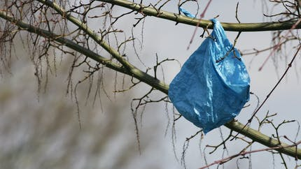 L'interdiction des sacs plastiques en caisse reportée à juillet 2016