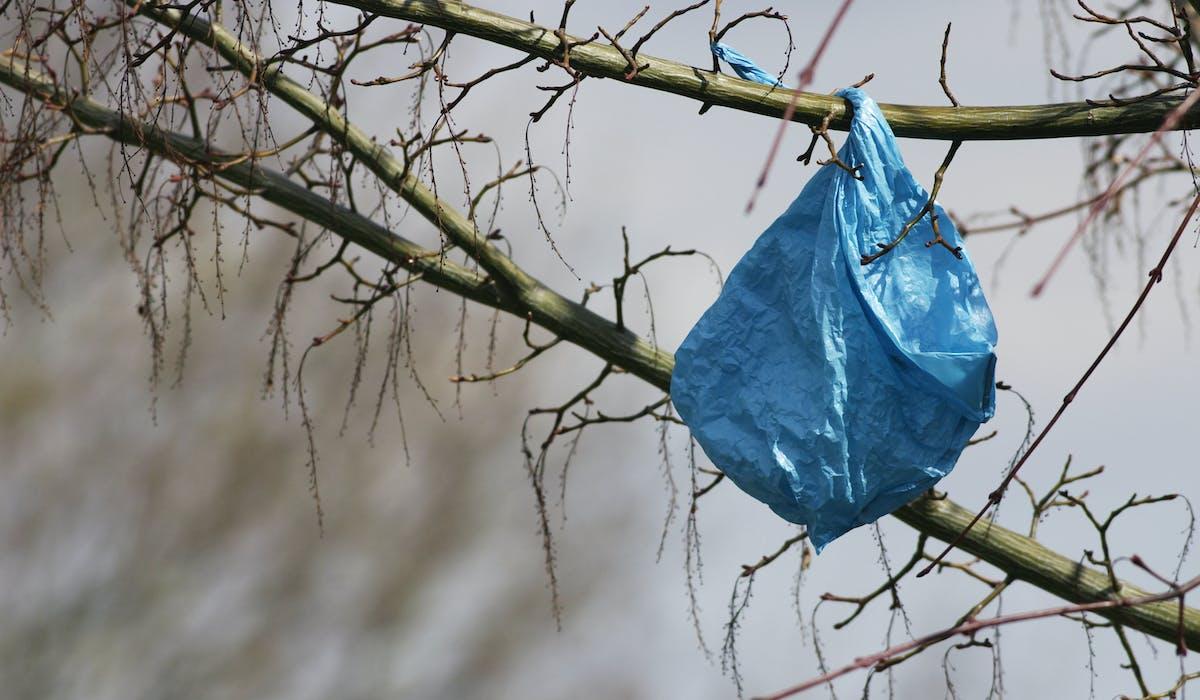 Chaque année, un Français utilise en moyenne 80 sacs plastiques à usage unique.