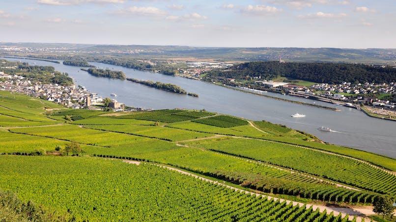 Le Haut-Rhin conditionne le versement du RSA à des heures de bénévolat dès 2017
