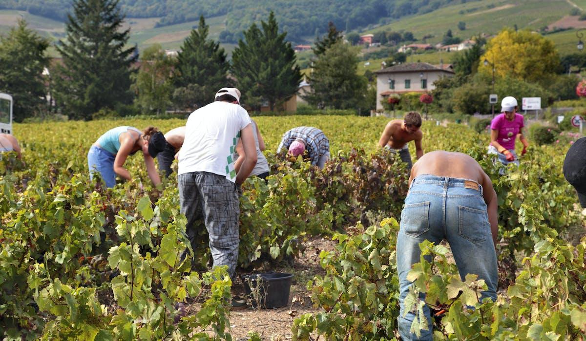 Les jobs saisonniers doivent rescpecter des règles particulières.
