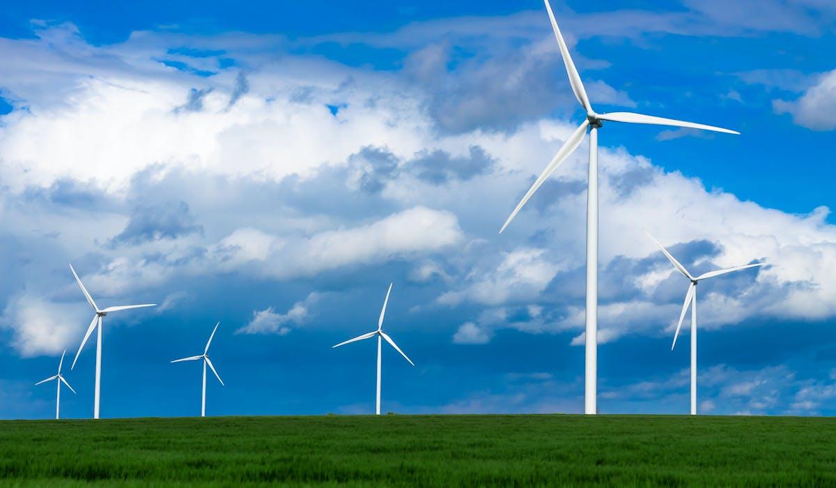 EDF ne propose plus que des offres d'électricité produite à partir d'énergies renouvelables (hydraulique, éolien et solaire).