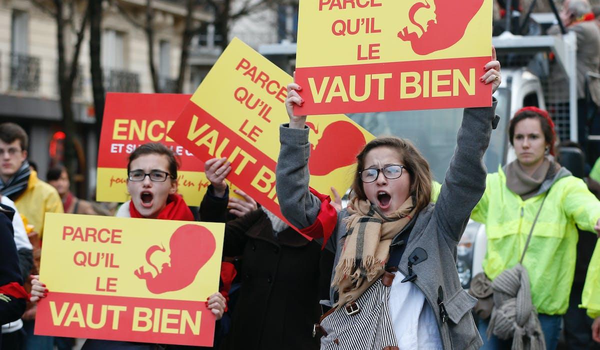Une manifestation anti-avortement, en janvier 2014 à Paris.