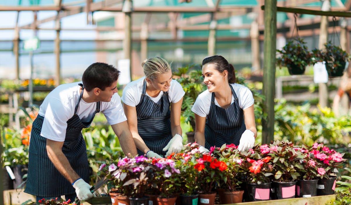 Les primes et gratifications entrent dans la déclaration de revenus des salariés.