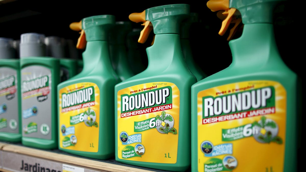 Des magasins laissent toujours en libre accès dans leurs rayons des produits dangereux comme le Roundup ou le désherbant Fertiligène anti-repousse.