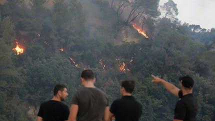 Incendies en forêt : comment les éviter ?
