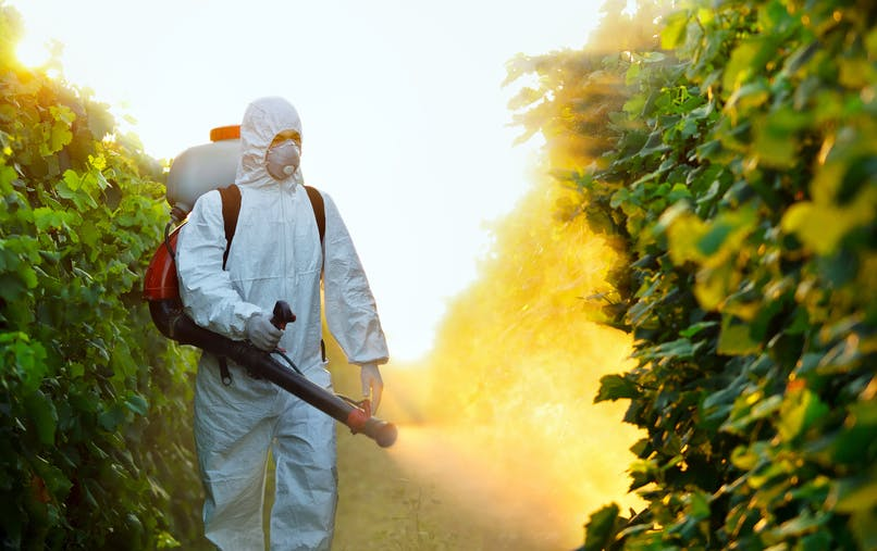 L'avocate Corinne Lepage a lancé une association d'aide aux victimes de pesticides.
