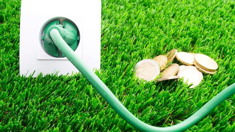 Electricité : découvrez l'offre à prix cassé de Selectra et Mint Energie