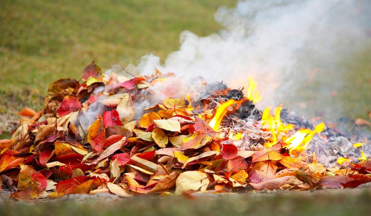 Le préfet peut prévoir des exceptions autorisant ce brûlage des déchets verts dans certaines zones dépourvues de déchetterie et de système de collecte.