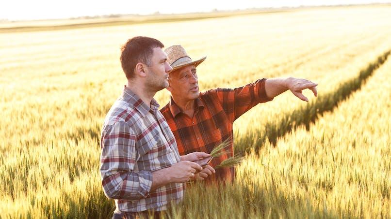Santé des agriculteurs : la MSA lance une vaste étude