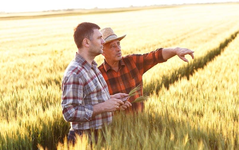 La MSA lance une grande enquête sur l'état de santé des professionnels du monde agricole.