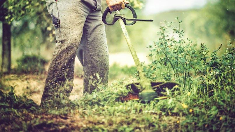 Débroussaillage de votre terrain: est-ce obligatoire?