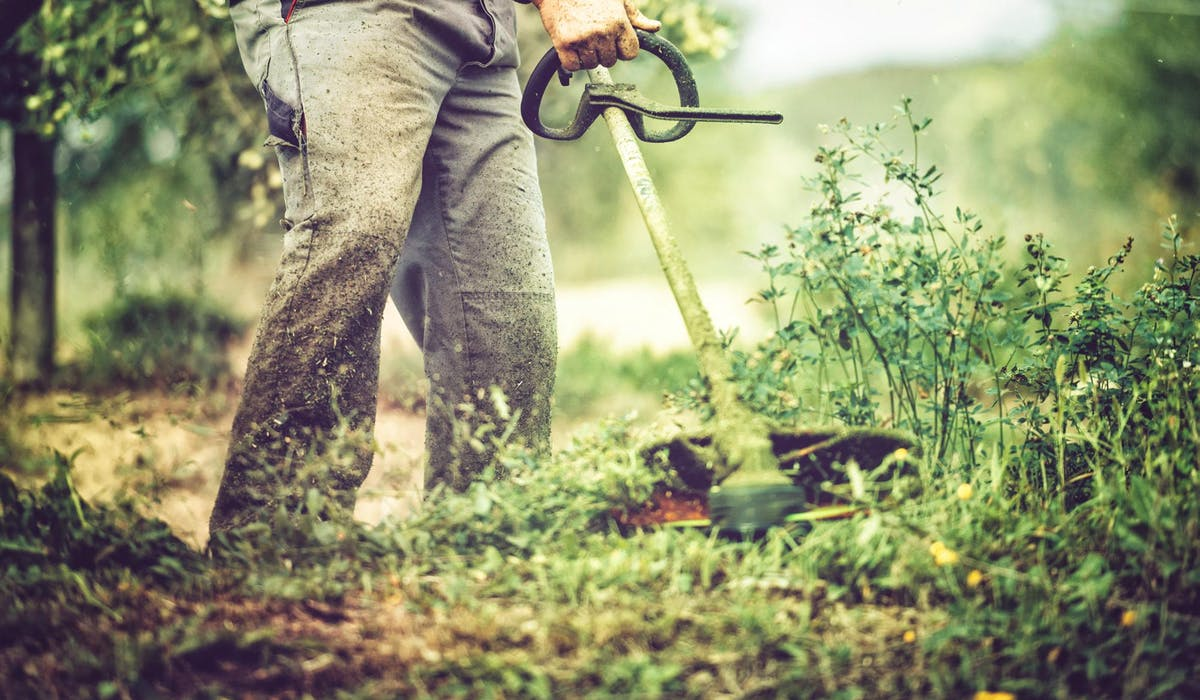 Vous pouvez charger un jardinier d'accomplir les opérations nécessaires.