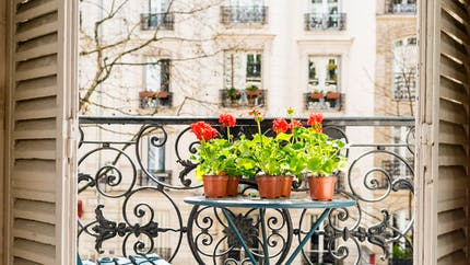 Fleurir son balcon : les règles à respecter