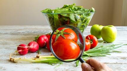 Pesticides : quels supermarchés vendent les fruits et légumes avec le moins de résidus ?