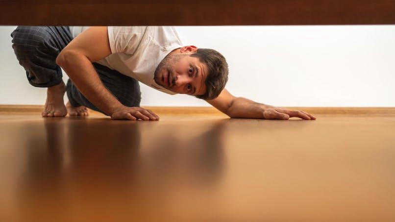 Punaises de lit: comment s'en débarrasser?