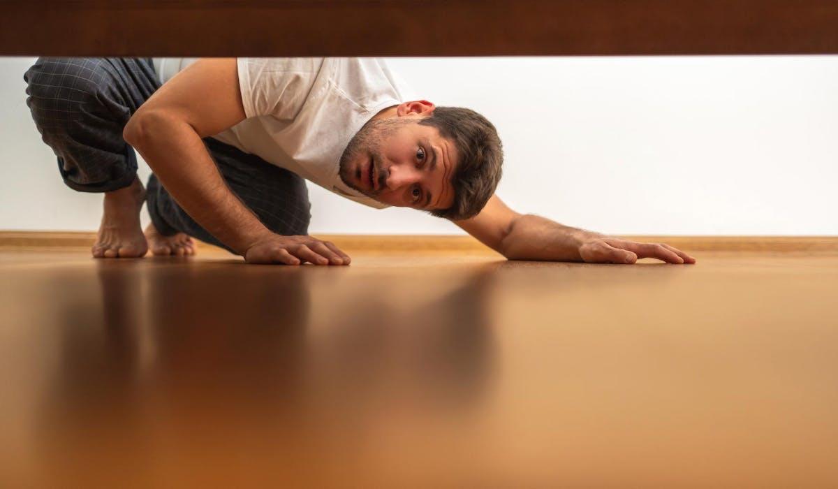 Découvrez comment vous débarrasser des punaises de lit