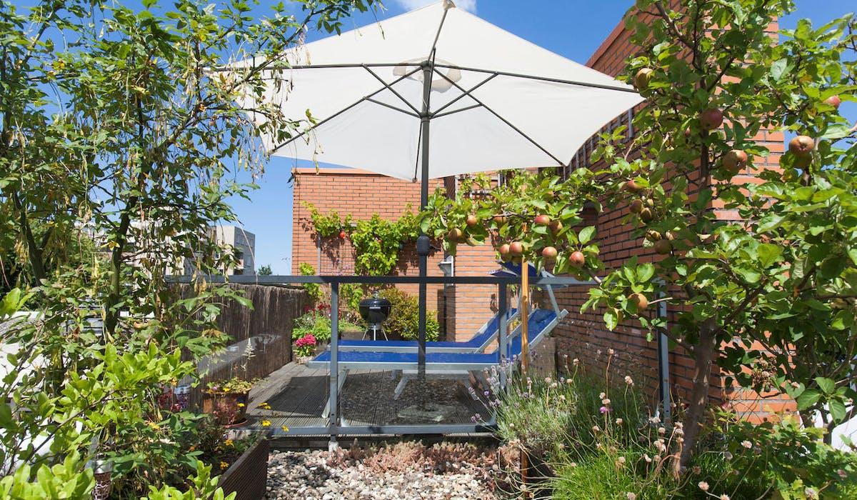 Aménager Un Petit Jardin De 20M2 comment bien profiter de sa terrasse ou de son balcon
