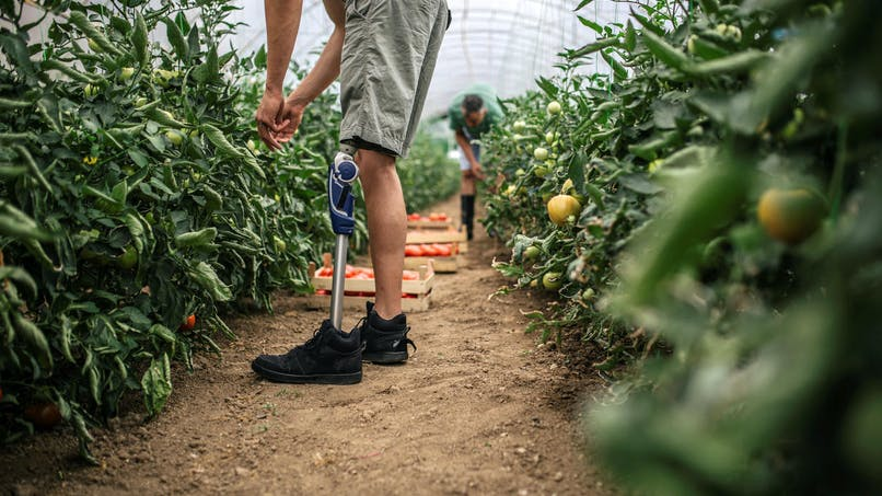 Statut de travailleur handicapé : quels avantages ?