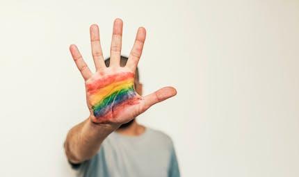 Lutte contre l'homophobie : les mesures du gouvernement