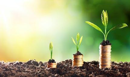 Quels sont les placements financiers préférés des ménages ?