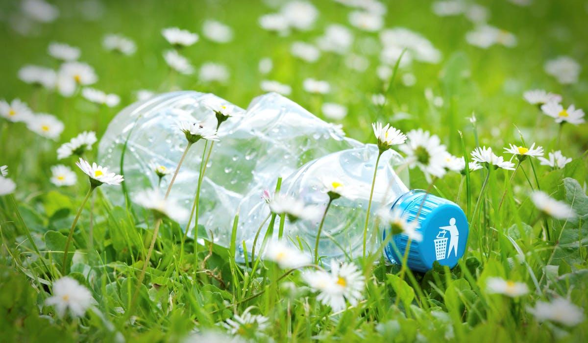 Le dépôt de déchets sur votre terrain peut être considéré comme une violation de votre propriété privée.