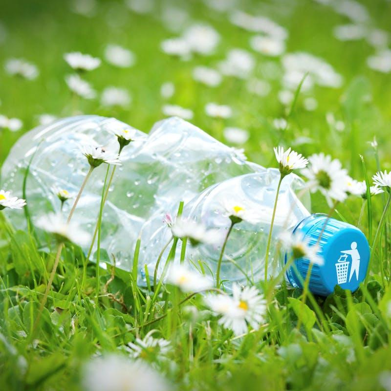 Que faire si mon voisin jette ses déchets dans mon jardin ?