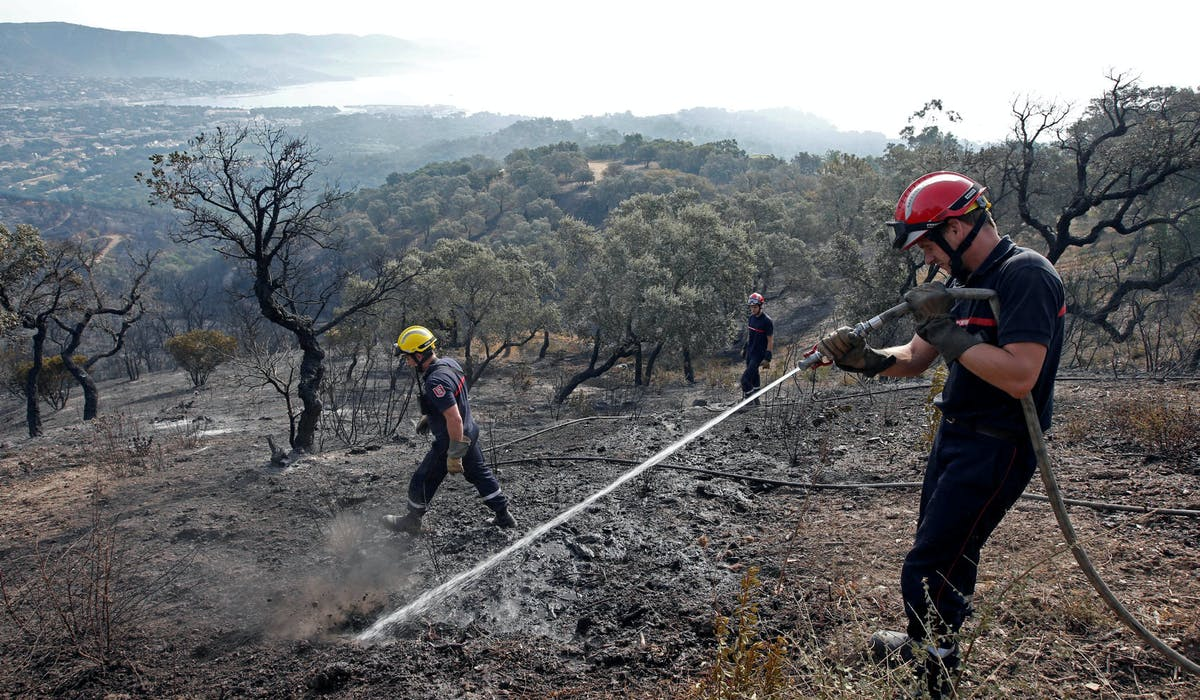 Des pompiers en intervention, le 27 juillet 2017 à Bormes-les-Mimosas (Var).