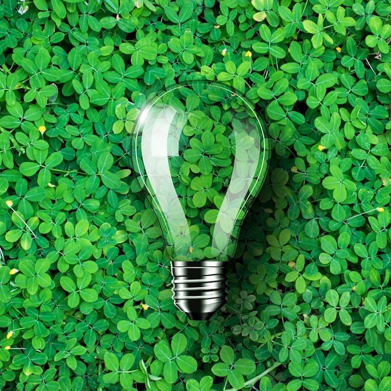 Gaz et électricité renouvelables : participez à la première opération d'achat groupé