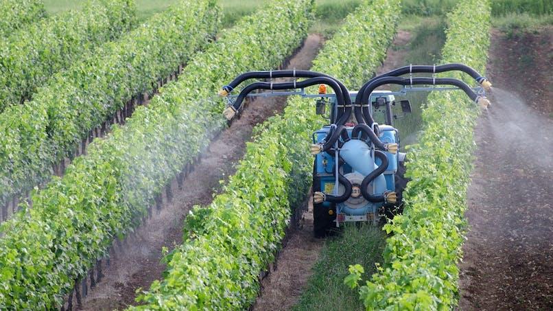 Pesticides : donnez votre avis sur les distances d'épandage