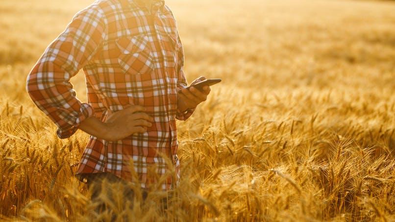 Services de téléphonie mobile : Orange reste l'opérateur le plus efficace