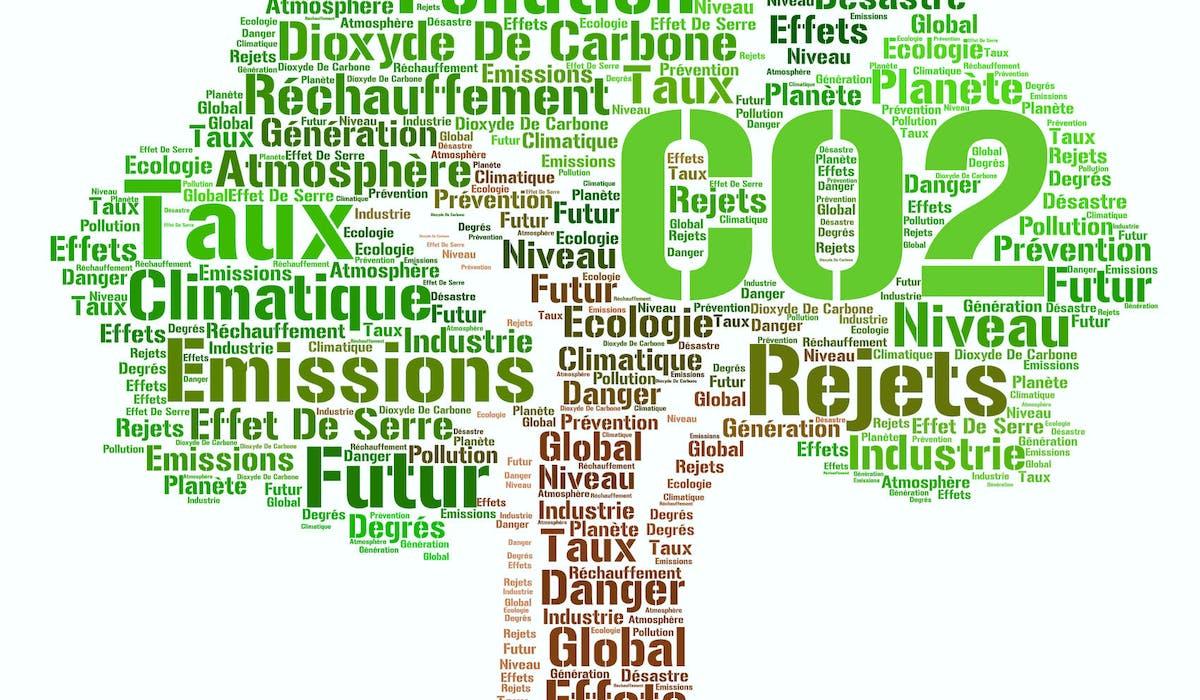 Experts, économistes, ONG sont auditionnés pour sauver le climat.