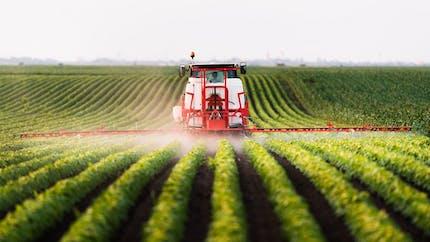 Pesticides : les distances d'épandage fixées à 5 et 10 mètres selon les cultures