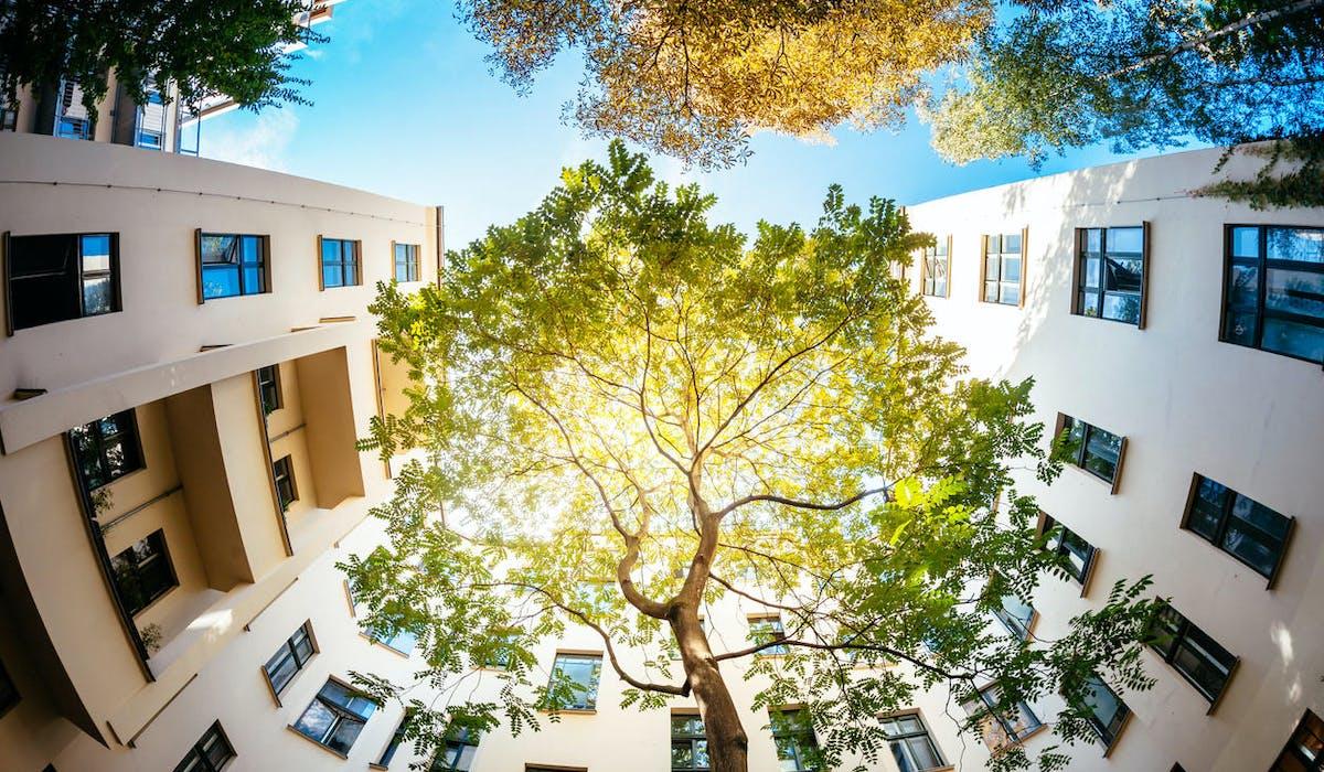 Un ensemble de logements repectueux de la nature et entouré d'arbres.