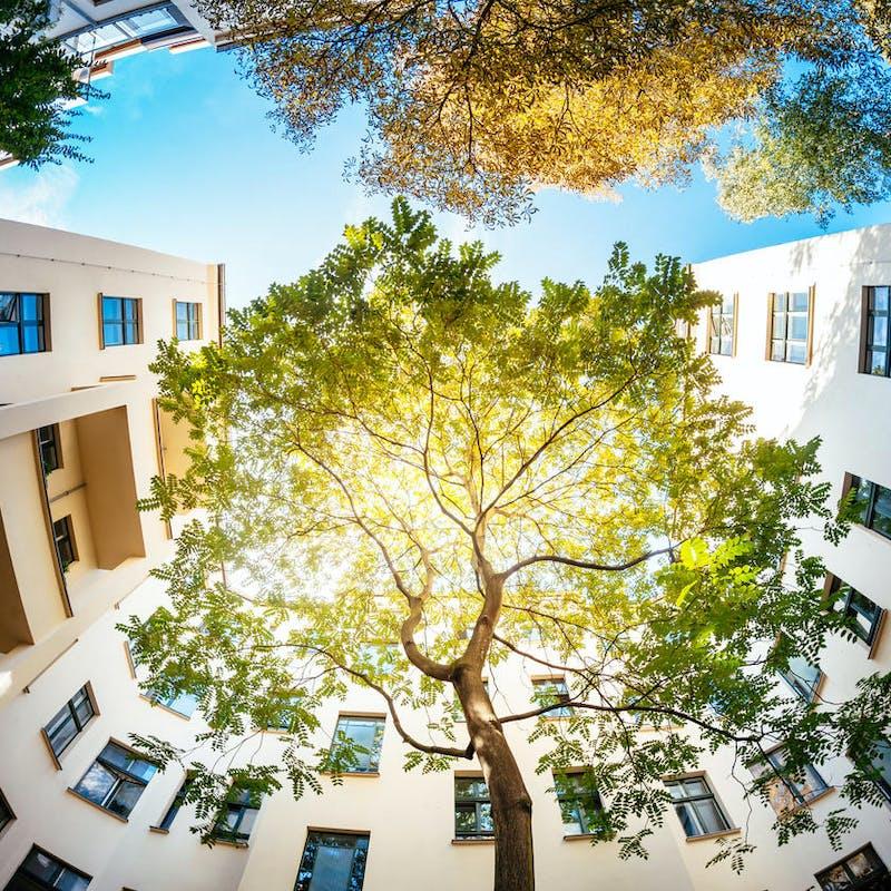 Un logement écolo et pas cher : c'est possible