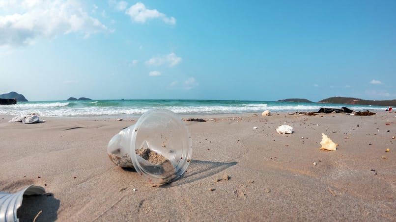 La loi anti-gaspillage est adoptée