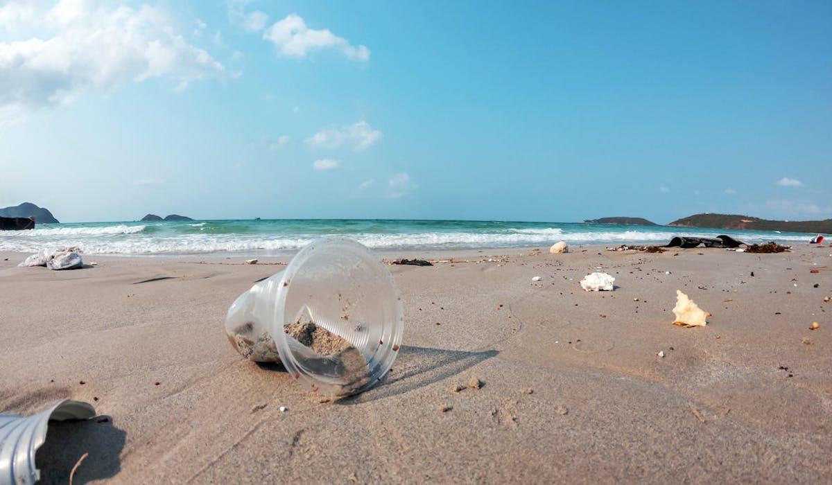 Une plage polluée de gobelets en plastique
