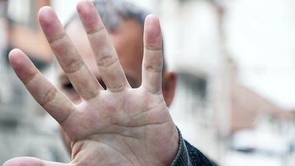 Vie privée: que risquent Piotr Pavlenski et Christophe Castaner?