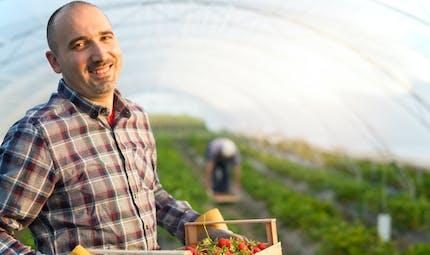 Coronavirus : comment aider les agriculteurs ?