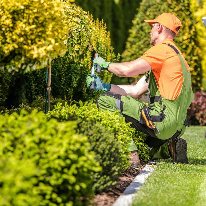 Impôts 2020 : l'emploi d'un salariés à domicile