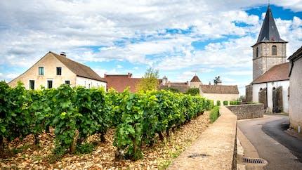 Saisonnier agricole : jusqu'à 600 euros d'aide pour payer votre loyer
