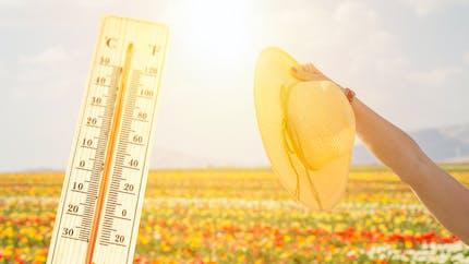 Fortes chaleurs : quand peut-on parler de canicule ?