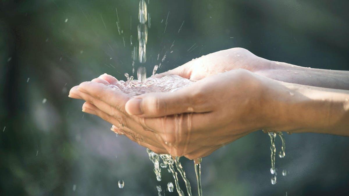 Des mains en coupe recueillent de l'eau