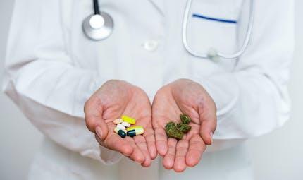 Cannabis thérapeutique : le gouvernement autorise les expérimentations