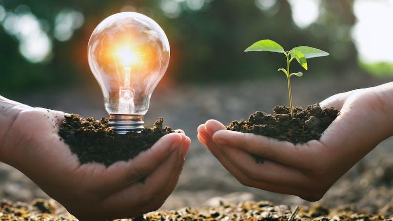Comment bien choisir son fournisseur d'électricité verte ?