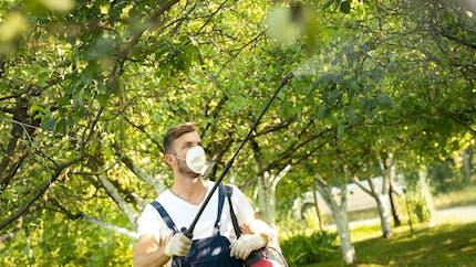 Victimes de pesticides : le fonds d'indemnisation est opérationnel