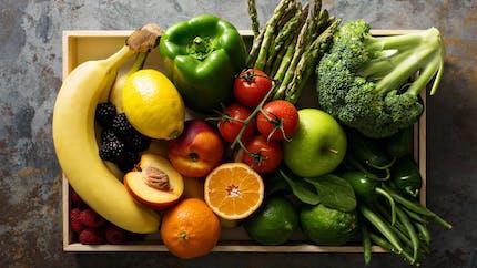 Chèque alimentaire : et si l'État vous aidait à mieux manger ?