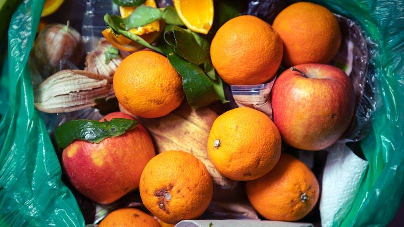 Alimentation : mieux s'organiser pour limiter le gaspillage de nourriture